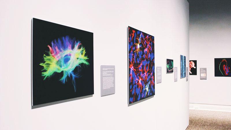 Art-Synesthésie